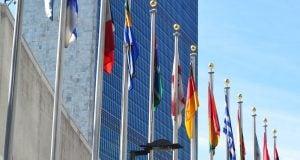 קנאביס ארגון הבריאות העולמי