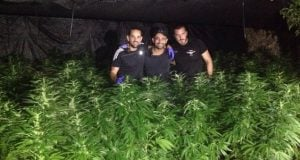 Redemption Cannabis breeding apartment