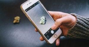 Buying Cannabis Telgram Israel