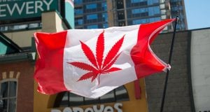 Flag of Cannabis Canada