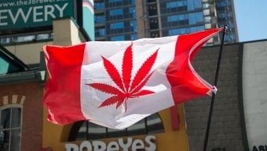 דגל קנאביס קנדה