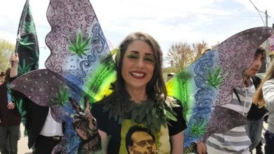 A young woman disguised as a Cannabis leaflet for legalization