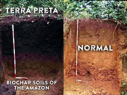"""הדגמה אדמה רגילה מול אדמת """"טרה פרטה"""""""