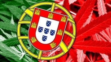 פורטוגל קנאביס רפואי