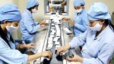 נשים עובדות במפעל תרופות