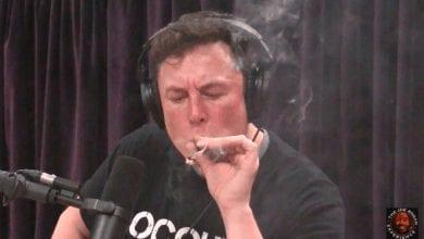 Photo of אילון מאסק מעשן ג'וינט בשידור חי