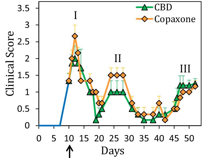 טרשת נפוצה - חומרת סימפטומים במהלך טיפול ב-CBD לעומת טיפול בקופקסון.