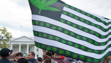 Flag of the United States Cannabis Green