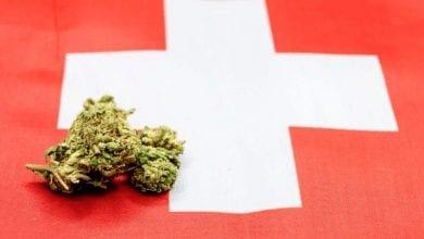 Photo of שווייץ מתכננת להתיר שימוש בקנאביס ל-5,000 אזרחים כפיילוט לפני לגליזציה