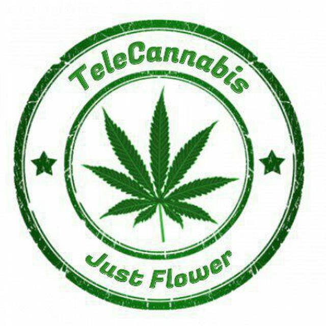 טלקנאביס לוגו