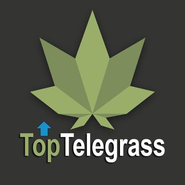 טופ טלגראס לוגו