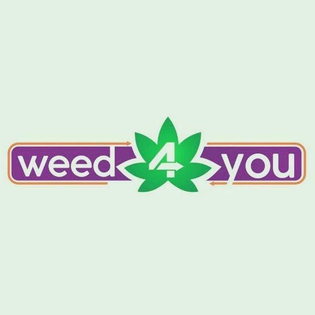 וויד4יו לוגו