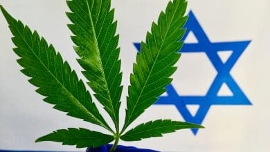 "Photo of בדרך ללגליזציה בישראל: בג""צ הקנאביס ההיסטורי הוגש"