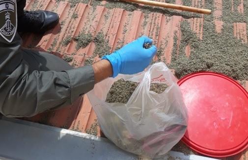 Gedroogde kruiden gespoten in de synthetische cannabinoïde 5F-ADB, die vorig jaar in beslag werd genomen in Israël. Laboratoriumtests hebben cannabinoïden gevonden in sommige CBD-producten