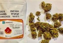 "Photo of משה""ב: אחוזי THC מדויקים על אריזות קנאביס רפואי – חובה"