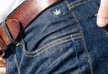 Chanvre Cannabis Levi's Jeans