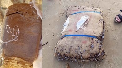 Photo of שק מלא חשיש נשטף לחוף בחיפה – הרוחצים הזעיקו את המשטרה