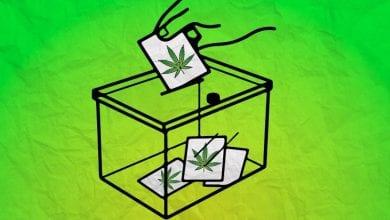 Photo of בחירות 2019: למי יצביעו תומכי הלגליזציה, ולמי עדיף שלא
