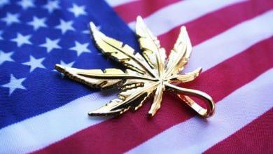 דגל ארצות הברית לגליזציה קנאביס