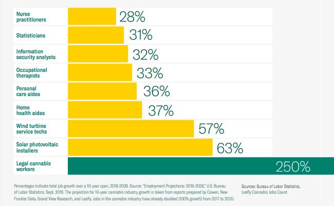 """תעשיית הקנאביס - בעלת הצמיחה המהירה ביותר בארה""""ב"""