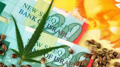 שטרות כסף ישראל קנאביס