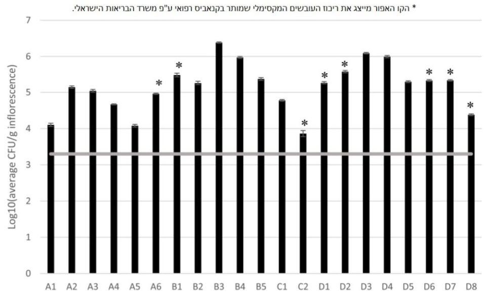 ריכוז עובשים ושמרים (TYM) בדגימות שונות של תפרחות קנאביס רפואי ישראלי מ-4 חוות גידול שונות בארץ. הקו האפור מייצג את ריכוז העובשים המקסימלי שמתיר משרד הבריאות בגרם של תפרחת