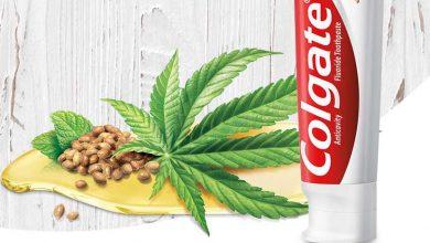 משחת שיניים קולגייט שמן זרעי קנאביס המפ