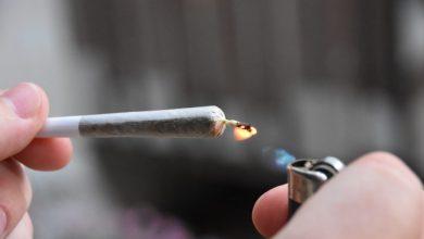 Photo of האם מותר לעשן קנאביס בשבת? הרב אומר כן, להקלה על כאבים