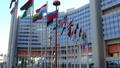 "Photo of היסטוריה: האו""ם הוריד את דרגת המסוכנות של קנאביס"